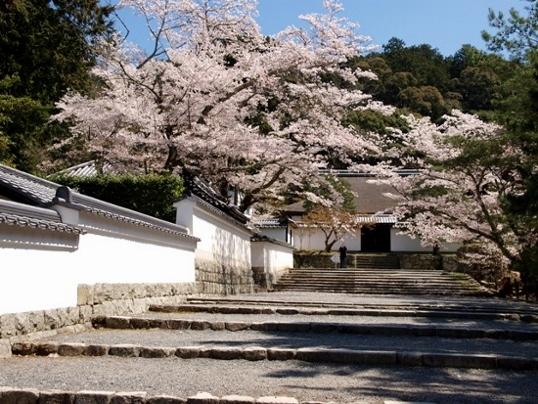 11-137 南禅寺 .jpg